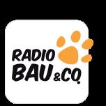 webradio Radio Bau